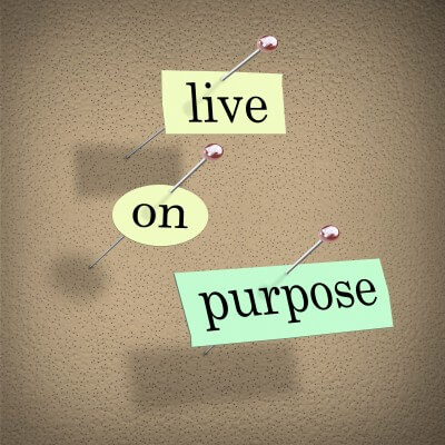 life-purpose_omtimes